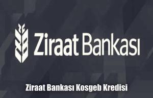 Ziraat bankası kosgeb kredisi