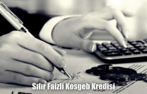Sıfır Faiz KOSGEB Kredi Veren Anlaşmalı Bankalar