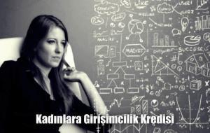 Kadınlara Girişimcilik Kredisi
